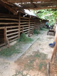Trại nuôi hươu